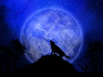 3D Halloween background with wolf howling against the moon. 3D render of a Halloween background with wolf howling against the moon Royalty Free Illustration