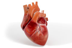 3D Heart Textured Royalty Free Stock Photography