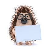 3d Hedgehog with a blank banner Stock Images