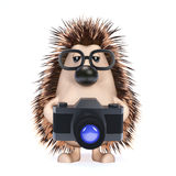 3d Hedgehog with a camera Royalty Free Stock Photography