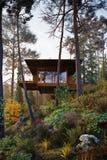 3D het Teruggeven blokhuis treehouse in houtochtend Stock Foto's
