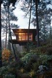 3D het Teruggeven blokhuis treehouse in houtschemering Royalty-vrije Stock Afbeeldingen