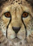 3D het Teruggeven Jachtluipaard Stock Foto's