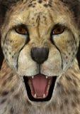 3D het Teruggeven Jachtluipaard Stock Foto