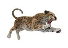 3D het Teruggeven Jachtluipaard op Wit Royalty-vrije Stock Foto