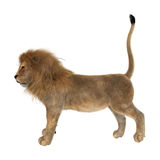 3D het Teruggeven Mannelijke Leeuw op Wit Stock Fotografie