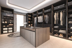 3d het teruggeven minimale zolder donkere houten gang in kast met garderobe Stock Afbeelding