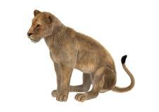 3D het Teruggeven Vrouwelijke Leeuw op Wit Royalty-vrije Stock Foto's