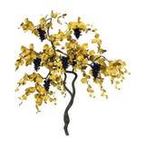 3D het Teruggeven Wijnstok op Wit Royalty-vrije Stock Foto's