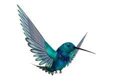3D het Teruggeven Zoemende Vogel op Wit Stock Fotografie