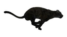 3D het Teruggeven Zwarte Panter op Wit Stock Afbeelding