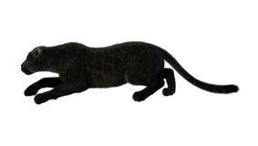 3D het Teruggeven Zwarte Panter op Wit Stock Foto's