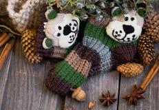 d'hiver toujours la vie avec les chaussettes des enfants de knit, cônes, cannelle, Damian Image libre de droits
