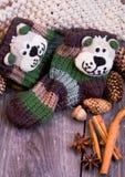 d'hiver toujours la vie avec les chaussettes des enfants de knit, cônes, cannelle, Damian Images libres de droits