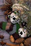 d'hiver toujours la vie avec les chaussettes des enfants de knit, cônes, cannelle, Damian Photo stock