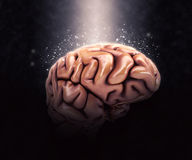 3D human brain on dramatic background. 3D render of a human brain on a dramatic background Royalty Free Stock Photo