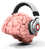 3d human brain with headphones. On white background Royalty Free Stock Photo