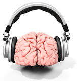 3d human brain with headphones. On white background Stock Image