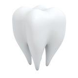 3D human tooth Royalty Free Stock Photos