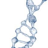 3d illustratie van DNA-moleculemodel van water Stock Afbeelding