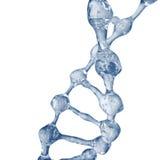 3d illustratie van DNA-moleculemodel van water Royalty-vrije Stock Afbeelding