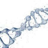 3d illustratie van DNA-moleculemodel van water Stock Foto