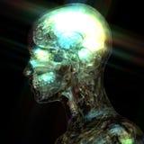 3D Illustratie van een menselijke Anatomie stock illustratie