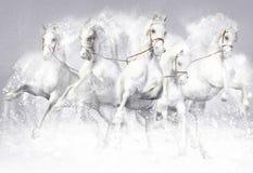 3D illustratie van paarden Stock Afbeelding