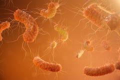 3d illustratie virale besmetting die chronische ziekte veroorzaken De hepatitisvirussen, griepvirus H1N1, Griep, cel besmetten stock illustratie