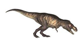 3D Illustratietyrannosaurus op Wit Stock Fotografie
