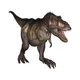 3D Illustratietyrannosaurus op Wit Stock Afbeeldingen