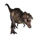 3D Illustratietyrannosaurus op Wit Stock Afbeelding