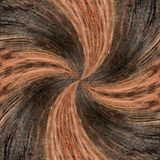 3d illustration. Abstract image of a wooden surface of a tree Royalty Free Stock Images