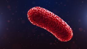 3d illustration of bacteria. Medical background.  Royalty Free Stock Photography