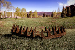 3d illustration. Of a bear trap on green grass Stock Image