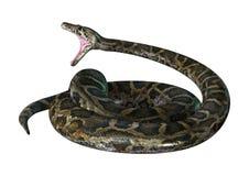 3D Illustration Burmese Python on White Stock Photo