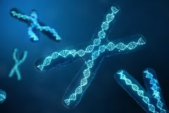 3D illustration X-Chromosomes with DNA carrying the genetic code. Genetics concept, medicine concept. Future, genetic. Mutations. Changing the genetic code at stock illustration