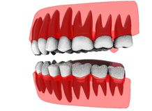 3d illustration of closed gum with teeth and tongue. Royalty Free Stock Photo