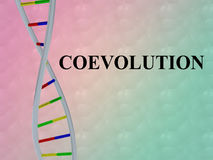 Coevolution - genetic concept Royalty Free Stock Photo