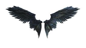 Demon Wings. 3d Illustration Demon Wings, Black Wing Plumage Isolated on White Background Stock Photo
