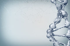 3d illustration of DNA molecule model from water. Royalty Free Stock Photos
