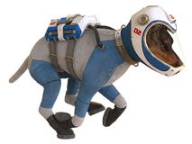 Dog in an astronaut`s space suit. 3D illustration isolated on white. 3D illustration. Dog in an astronaut`s space suit, isolated on white Stock Photo