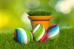 3d illustration_easter_egg_Pot of grass Stock Images