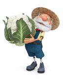 3D illustration the elderly farmer costs with cabbage in the ope Stock Photography