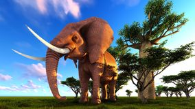 3d illustration of the elephant walking near baobab trees Royalty Free Stock Images