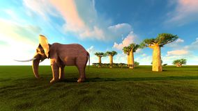 3d illustration of the elephant walking near baobab trees. 3d illustration of the elephant walking near baobabs Stock Image