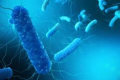3D Illustration Enterobacterias Gramm negativas Proteobacteria, Bakterien wie Salmonellen, Escherichia Coli, yersinia lizenzfreie abbildung