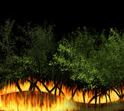 3D illustration forest fire burning, bushfire, wildfire close-up. At night. a wildfire is an uncontrolled fire in an area of combustible vegetation Royalty Free Stock Photo