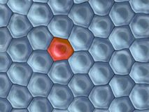 3d illustration of a frontal view on cell pattern with on red cell. In the middle Stock Photo