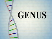 GENUS - genetic concept. 3D illustration of GENUS script with DNA double helix , isolated on pale blue background royalty free illustration